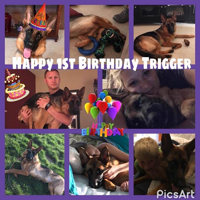 Trigger birthday